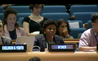 Evelyn_intervention_4th_session_HLPF