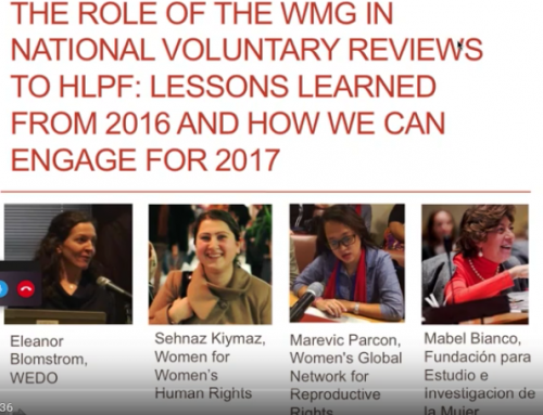 The role of the WMG in National Voluntary Reviews to HLPF: Lessons learned from 2016 and how we can engage for 2017