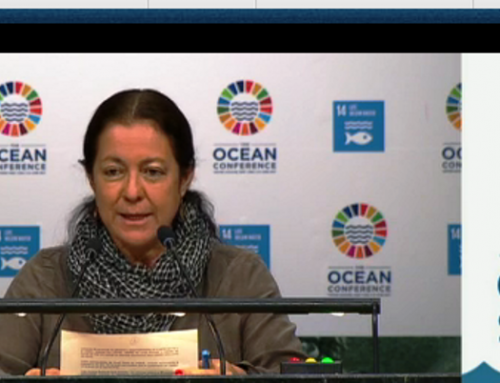 "The Ocean Conference: 4th plenary meeting ""Save Our Ocean"" – Vivienne Solis Intervention"