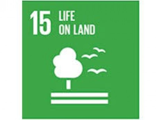 WMG Webinar on SDG 15 & 6: Ecosystems/Land and Water/Santation