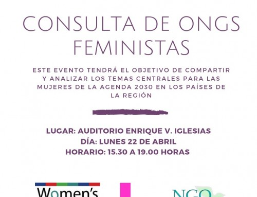 Feminist NGOs Consultation during the Third Meeting of the Forum of the Countries of Latin America and the Caribbean on Sustainable Development