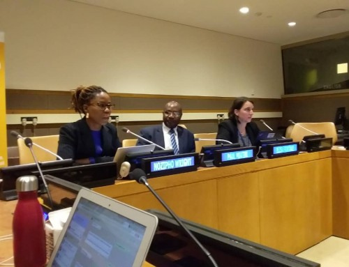UN Decade of Sustainable Energy for All 2014-2024: Nozipho Wright's Intervention at the Session on A Mid-Point Review on
