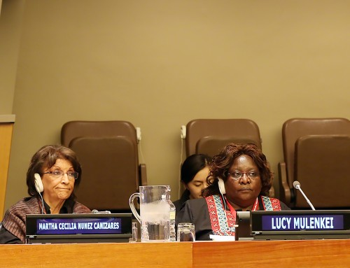 UNFF14: Fernanda Rodrigues's Presentation at the Actions by Major Group Partners in Support of the UNSPF 2030