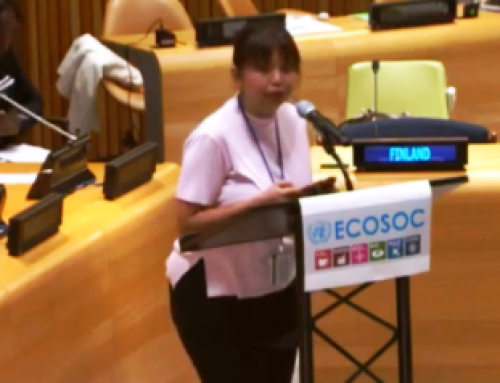 HLPF 2019: Prameswari Puspa Dewi's Intervention at the ECOSOC Meeting