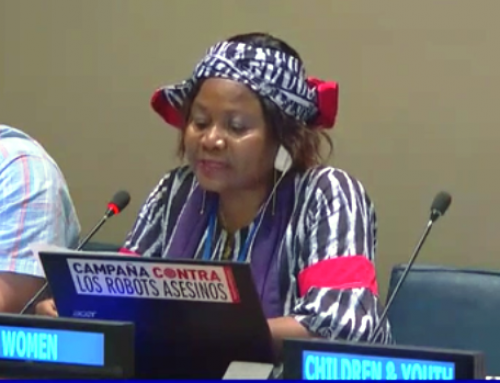 HLPF 2019: Sylvie Ndongmo's Intervention on Are We on Track for Mobilizing the Trillions we Need for the SDGs?