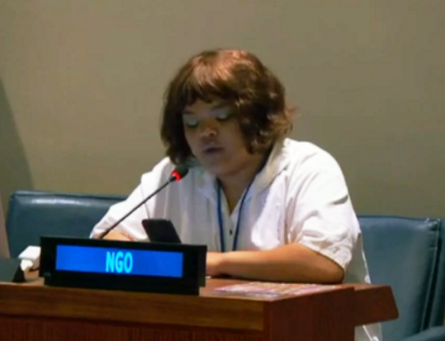 HLPF 2019: Kim Windvogel's Intervention on Africa VNR